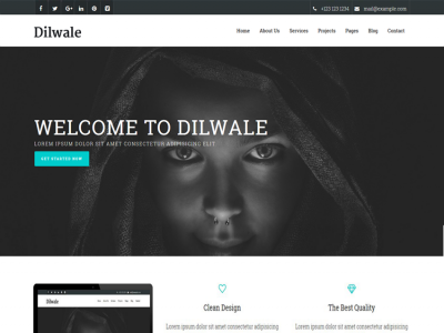 Dilwale - Responsive Website Template