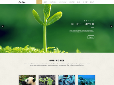 Active - One Page Html Template