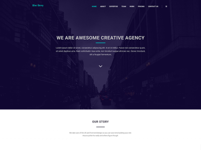 Blue berry single page multipurpose theme