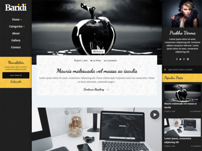 Baridi - Personal and Multi Author Blog Template