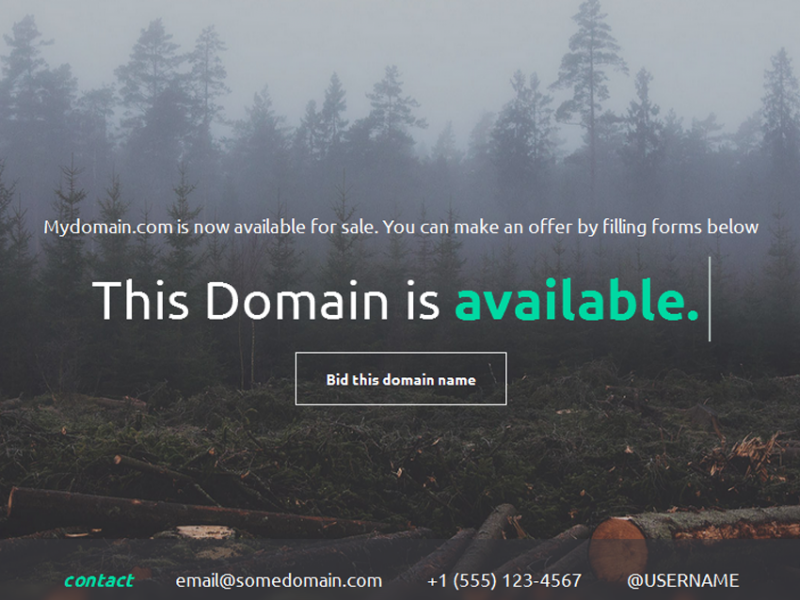 Domain Bidder - Landing Page to Sell Domains