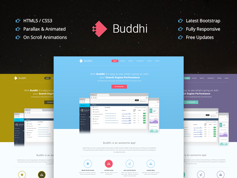Buddhi - Multipurpose One Page Parallax Landing Page
